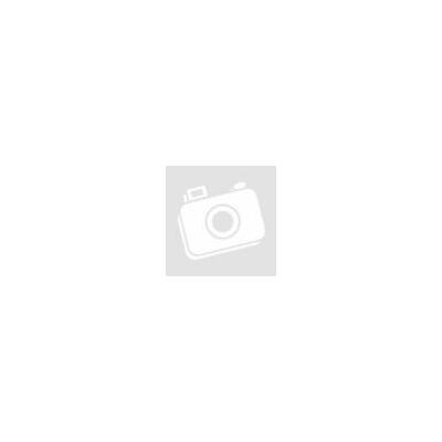 Építőipari költségbecslési segédlet 2021 E-könyv (digitális) – MÉK TAGOKNAK